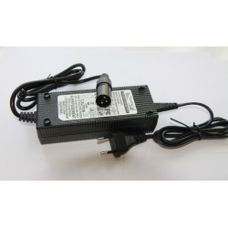 copy of 29,4V Charger for...